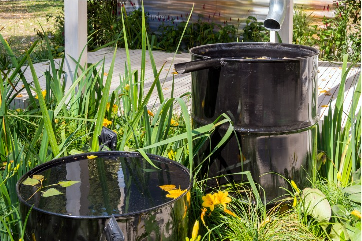 Rainwater Collection Systems Plumbing Services